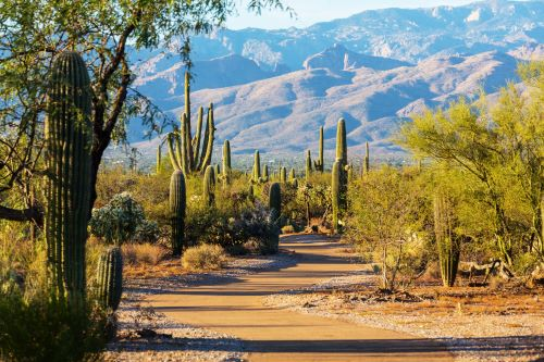 bridgewater-4-day-trips-to-enjoy-when-you-venture-from-your-assisted-living-in-tucson